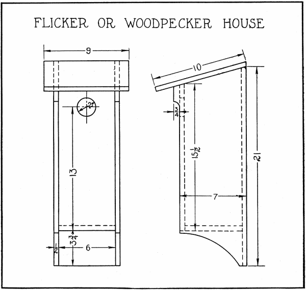Flicker Bird House: Bird House Plans + Dimensions + Diagram