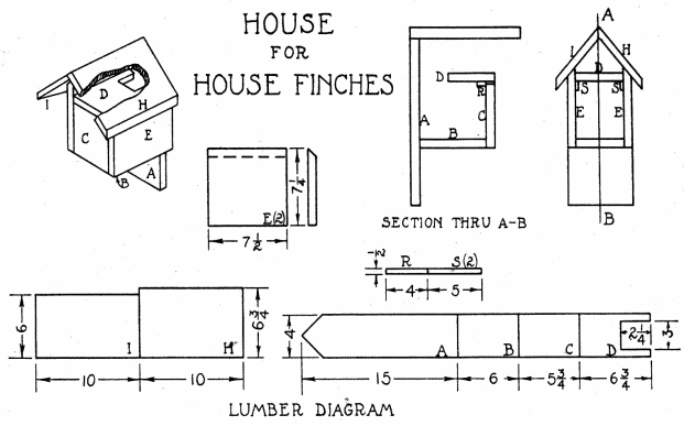 Finch Bird House Plans + Dimensions of Finch House Plans