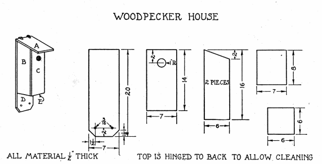 Woodpecker Bird House - Plans to Build with Scrap Lumber