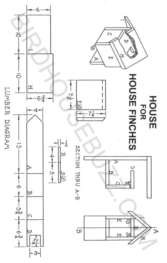 bird house plans finches