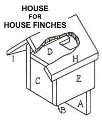 birdhouse plans for house finch