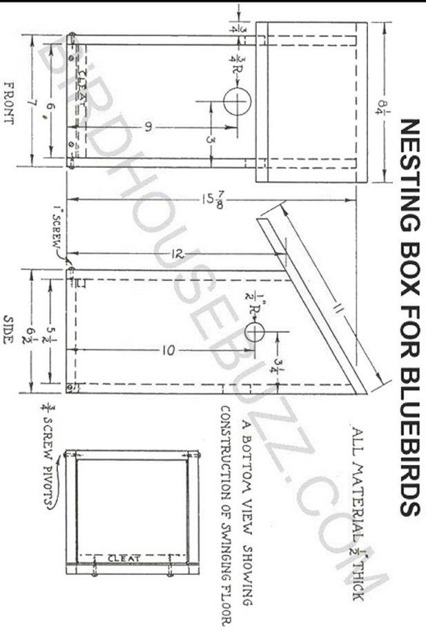 flicker bird house plans